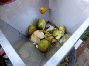 Cider Apples Grinder