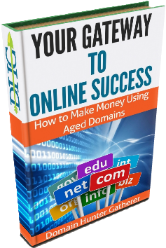 How to Make Money Using Aged Domains