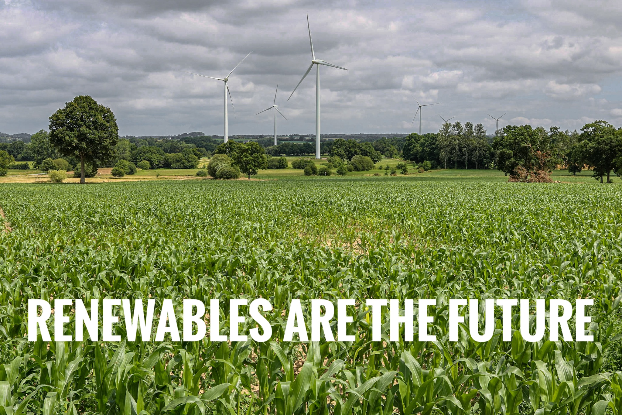 Renewables are the Future