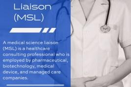 MSL.net, three-letter domain name for sale