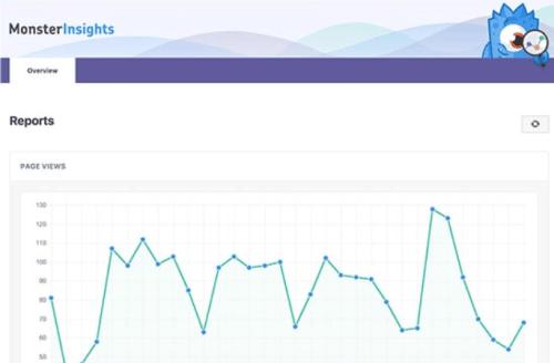 Google Analytics - MonsterInsights - Dashboard Reports