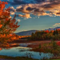 4 Reasons to Cruise Through Fall Foliage