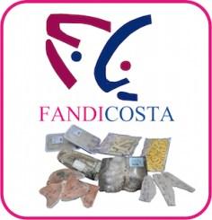 logo fandicosta