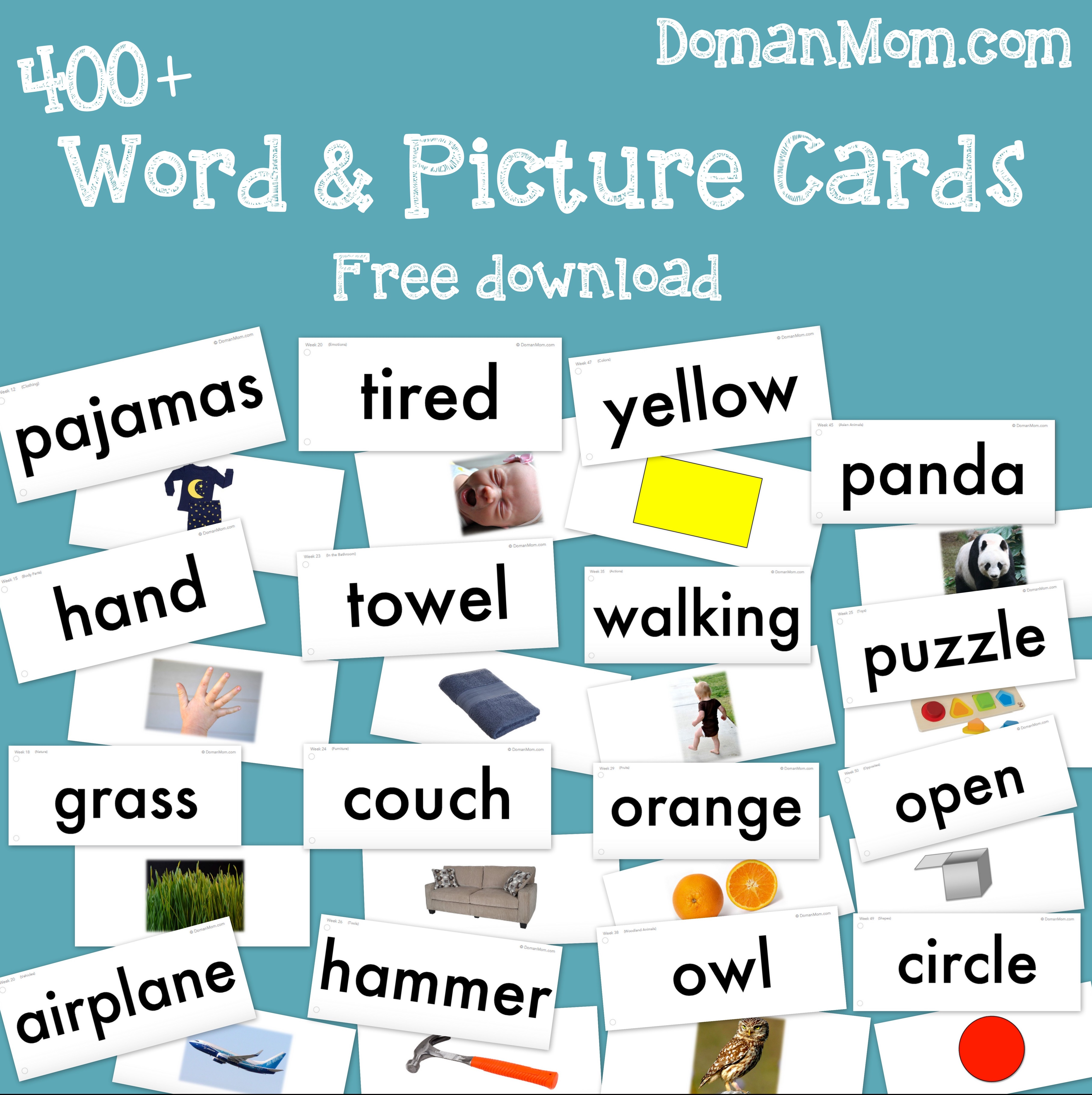 Teach Your Baby To Read Word U0026 Picture Cards (Doman Inspired)