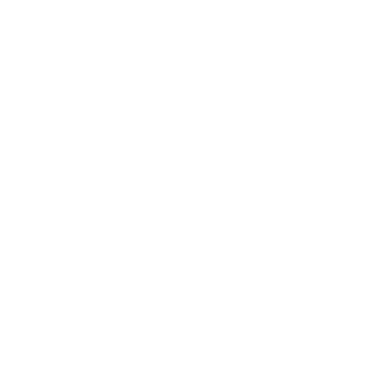 City of VA Beach Logo