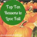 Top Ten Reasons to Love Fall