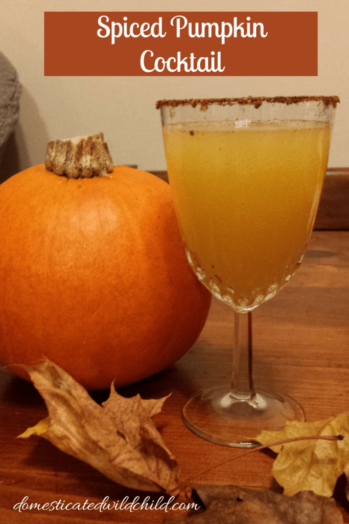 Spiced Pumpkin Cocktail