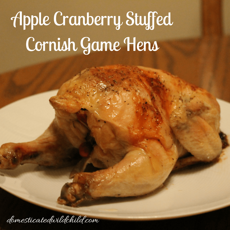 Apple Cranberry Stuffed Cornish Game Hens