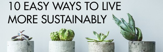 10 Ways to Live More Sustainably without Breaking Your Budget