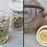 Pregnancy Insomnia Herbal Tea Recipe