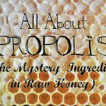 All About Propolis – The Mystery Ingredient In Raw Honey