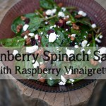 Cranberry Spinach Salad with Raspberry Vinaigrette Recipe