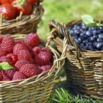 3 Pre-Planning Tips for Starting a Backyard Berry Garden