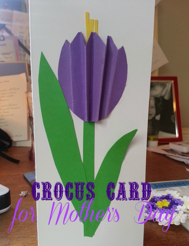 crocus card for Mother's Day