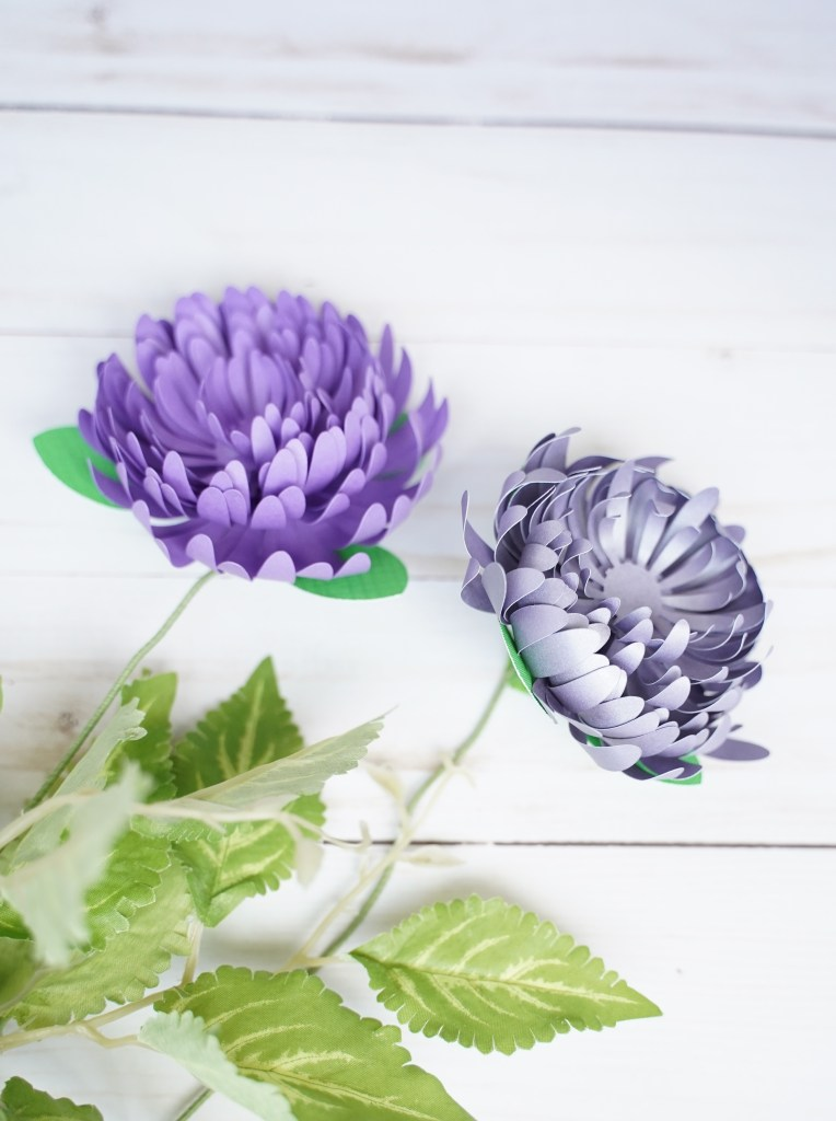 DIY Paper Flower template, free svg, paper chrysanthemum