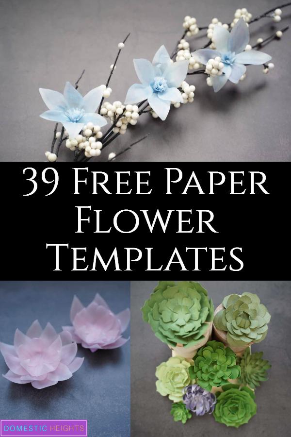 free paper flower templates svg