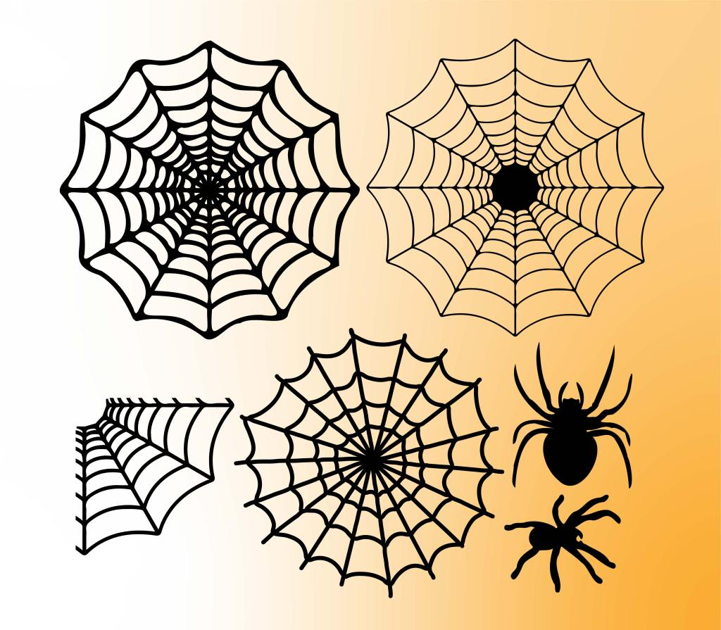 spider web svg