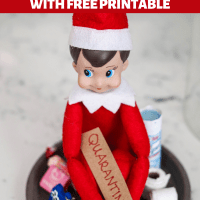 DIY Quarantined Elf on the Shelf - FREE PRINTABLES