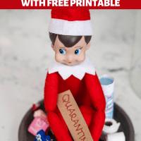 DIY Quarantined Elf on the Shelf - FREE PRINTABLES