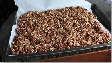 Recipe Cocoa Almond Granola Domestocrat