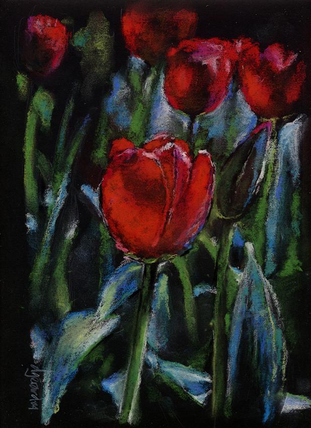 Tulipes 2004