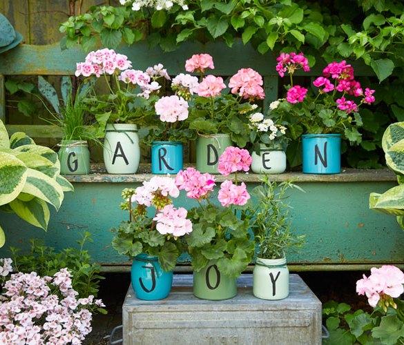 dekoracje z pelargonii do ogrodu