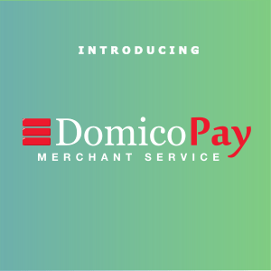 introducing domico payments