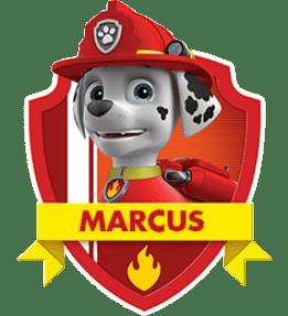 Marcus, un chiot de la Pat Patrouille