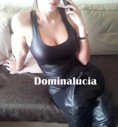 dominacion 803