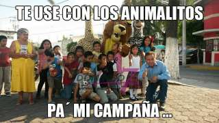 CLUB DE LOS ANIMALITOS