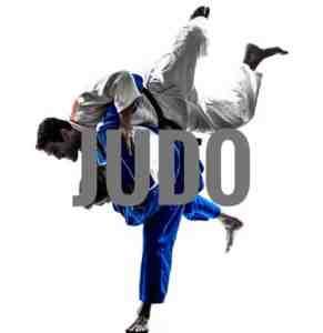 image-judo-1-e1478932851406-02