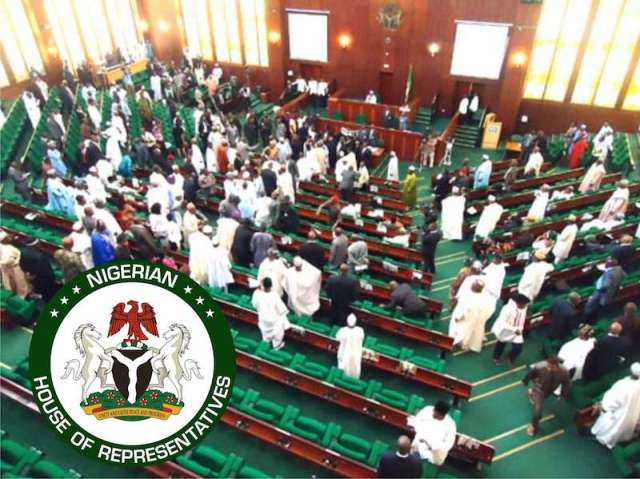 Reps pass revised N10.8trn budget, add N4bn for doctors, approve Buhari's $5.5bn loan
