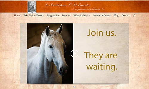 The Société pour L'Art Equestre website is up!