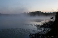 Brume sur un lac à Cap-Seize, direction Parc de la Gaspésie