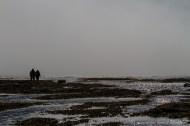 Promenade dans la brume