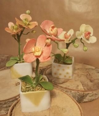 Orchid Flower Pots minicakes