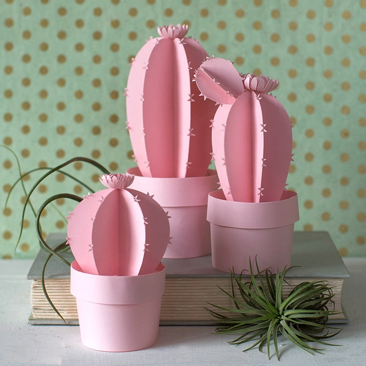 Gentle pink paper cactus