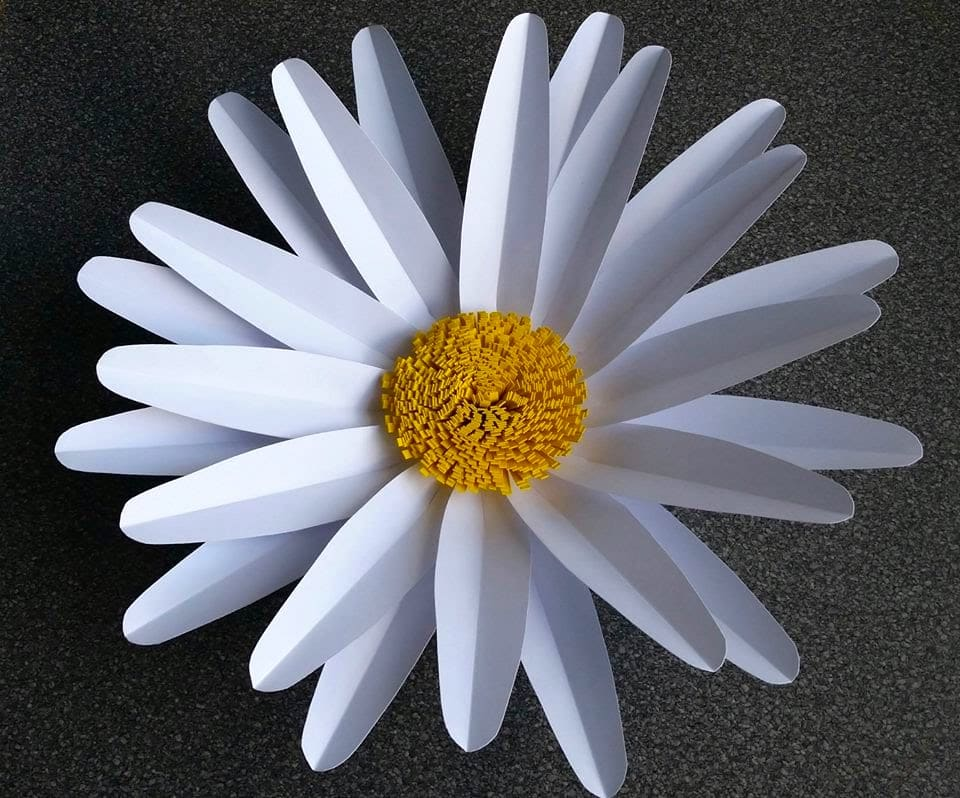 Ромашка – символ любви и красоты