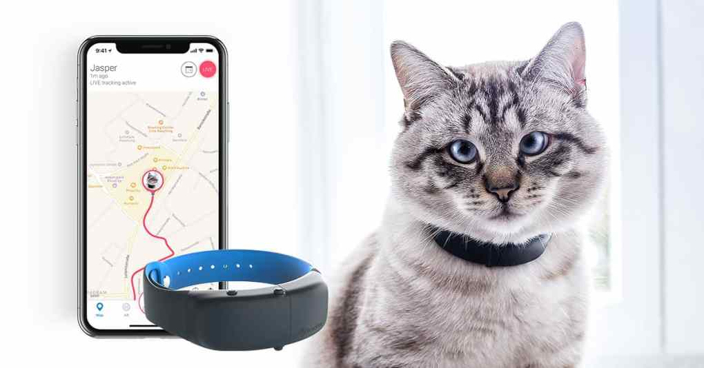 Tractive pour chats