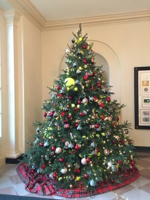 Tennis Ball Tree