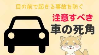犬の注意する車の死角