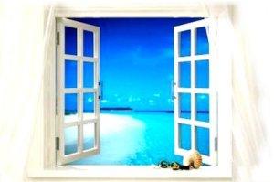 Pule-a-janela