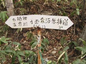 赤沼参拝道