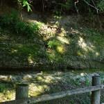 貝子沢化石公園