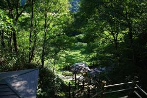 貝子沢化石公園 高さは40m