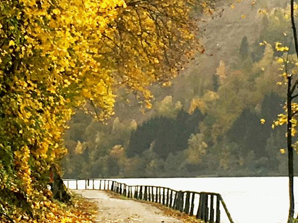 Klasiskā velosipēdu tūre un populārākā tālsatiksmes velosipēdu tūre pasaulē ir Donavas veloceļš no Passau līdz Vīnei - ideāls velobrauciens iesācējiem, pazinējiem un ģimenēm. Viss, kas veido veiksmīgu velobraucienu, ir atrodams šeit: Donavas veloceliņš piedāvā iespaidīgas upju ainavas ar stāvām, mežainām nogāzēm, vīna dārziem un augļu dārziem. Katram reģionam pa šo ļoti labi attīstīto veloceliņu ir savs īpašais šarms. Schlögener Schlinge, Strudengau, Nibelungengau vai Wachau ir arī kultūras zeme ar daudzām ievērojamām vietām no romiešu, Nibelungen un krustnešu pagātnes. Velomaršruts ir ne tikai skaists, bet arī ērti braucams, tas ir gandrīz pilnībā līdzens