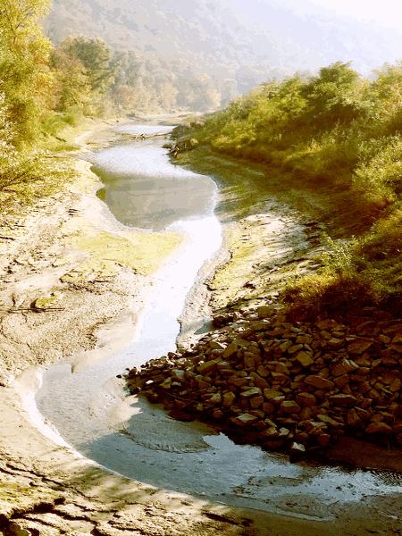 Über das Naturschutzprogramm LIFE-Natur der Europäischen Union wurden zwischen 2003 und 2008 drei vom Donauwasser abgeschnittene Altarmreste in Aggsbach Dorf, Grimsing und Rührsdorf- Rossatz wieder mit der Donau verbunden. Die neuen Gerinne wurden bis einen Meter tiefer als das Regulierungsniederwasser (= Pegel Kienstock 177 cm) ausgehoben. Damit wurden in der Wachau wieder Refugien für Donaufische und andere Gewässerbewohner wie Eisvogel, Flussuferläufer, Lurche und Libellen geschaffen.