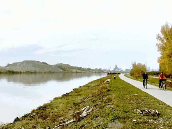 Menschen und Zugtiere zogen mittels Tauwerk Frachtschiffe die Donau flussaufwärts. Dazu wurden Wege unmittelbar am Ufer der Donau entlang angelegt, sogenannte Treidelpfade oder Treppelwege. Die Treidelschifffahrt ging mit dem Aufkommen von maschinengetriebenen Schiffen und Schleppern zu Ende. Das Betreten der ehemaligen Leinpfade an der Donau war bis in die 1980er Jahre nur auf eigene Gefahr gestattet. Heute dienen die Treppelwege dem Wasserbau zur Erhaltung verschiedener Wasserschutzbauten. Der Donauradweg gilt als der beliebteste Fernradweg der Welt. Als Klassiker bezeichnet wird die Etappe von Passau stromabwärts bis Wien. Um die ehemaligen Treppelwege als Radwege nutzen zu können musste der Linzer Manfred Traunmüller, einer der Initiatoren der Radroute, etliche behördliche Hürden überwinden. Im September 1982 wurde der erste Abschnitt, die ersten 36 Kilometer zwischen Ottensheim und Aschach als Radweg eröffnet. Nachdem den Verantwortlichen allmählich der Nutzen für den Fremdenverkehr bewusst wurde da das Interesse der Radfahrer immer weiter stieg, konnte schon 1985 die gesamte 310 Kilometer lange Strecke von Passau nach Wien als Radweg freigegeben werden. Traunmüller ist Geschäftsführer der Donau Touristik. Neben Rad Touren auf dem Donauradweg werden von der Donau Touristik Radreisen durch viele Länder Europas angeboten.