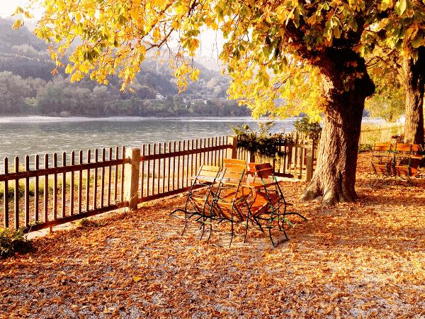In der Wachau darf die Donau auch in Zukunft frei fliessen. An diesem ungestauten Flussabschnitt erleben wir die Dynamik eines Flusses der durch das strömende Wasser in ständiger Veränderung bleibt.