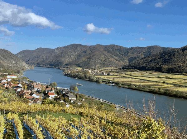 """1955 m. Wachau buvo paskelbta kraštovaizdžio apsaugos teritorija. Aštuntajame ir devintajame dešimtmečiuose buvo sėkmingai sustabdyta Dunojaus elektrinės statyba netoli Rührsdorf. Taigi Wachau rajone esantis Dunojaus vanduo gali būti išsaugotas kaip tekančio vandens telkinys. Tuomet Wachau sėkmingai pateikė paraiškas gauti Europos Tarybos Europos gamtos apsaugos diplomą ir UNESCO pasaulio paveldo apdovanojimą. """"Wachau"""" ateitis, šio unikalaus kraštovaizdžio išsaugojimas ir gerinimas tapo visos žmonijos reikalas. Dėl ypatingos geologinės, klimato ir kraštovaizdžio įvairovės Wachau yra toks svarbus. Saugoma upių kraštovaizdžio, piliakalnių pievų, sausos žolės, vyno terasų, sodų ir miškų natūrali teritorija. Abrikosų žiedas balandžio viduryje yra pavasario akcentas - ypatinga gamtos patirtis Wachau mieste."""